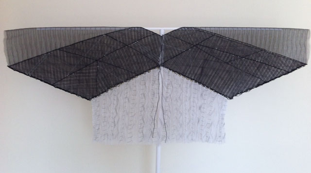 Anthea Vaal, Parasol