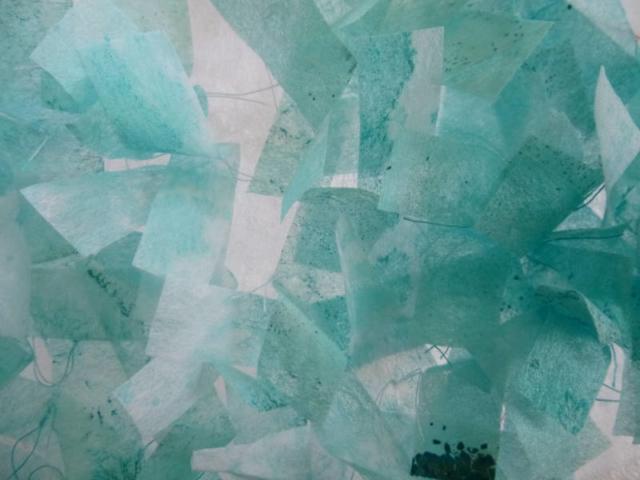 Anthea Vaal, Umbrella detail